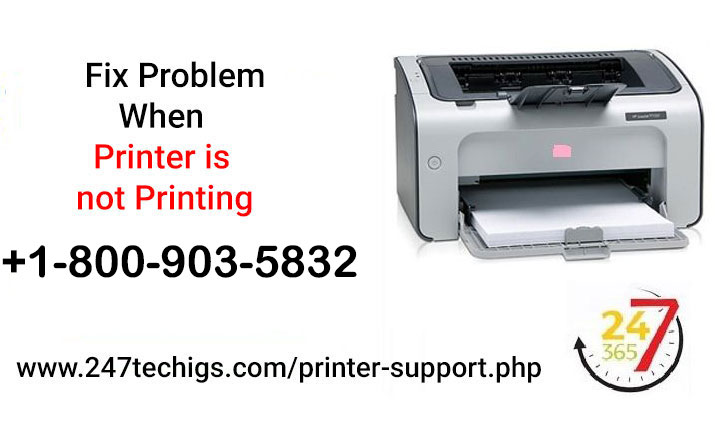 Get The Imperative Solution With Our Expert When Printer Is Not Printing